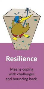 Kiwi Can resilience